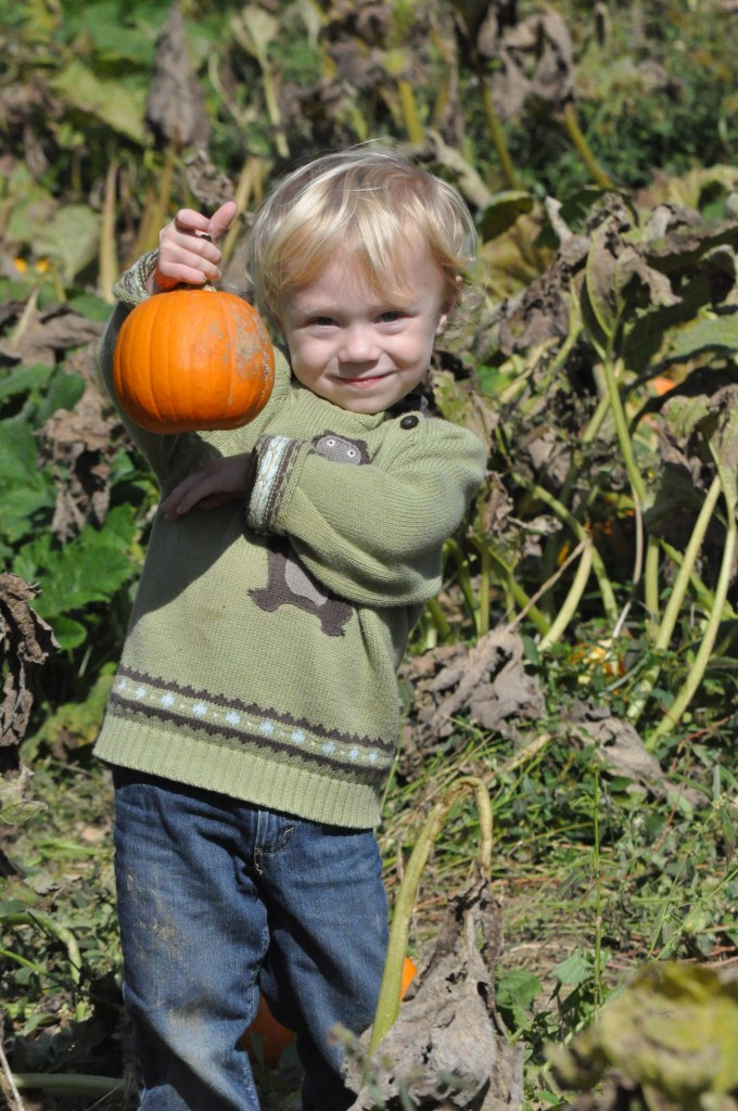 Brooks picking Pumpkins